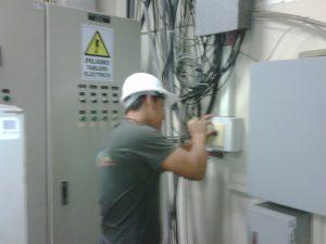 IMG00251-20110805-0221-300x225