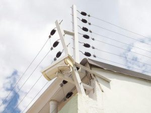 cerco-electrico-100mts2-cercos-electricos-seguridad-D_NQ_NP_251511-MLV20562317193_012016-F-300x225